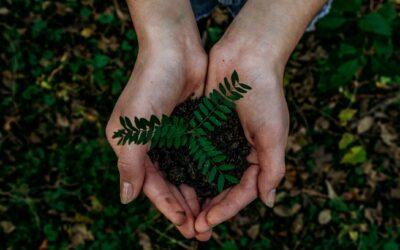Mijn weg naar duurzaamheid